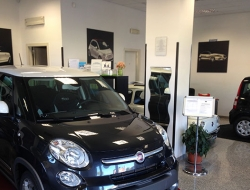 Profession Car SRL - Automobili - Albano Laziale (Roma)
