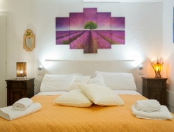 Apartments Le Orchidee - Bed & breakfast,Residences ed appartamenti ammobiliati - Orvieto (Terni)