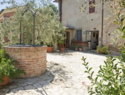 Bed And Breakfast Il Pettirosso - Bed & breakfast - Siena (Siena)