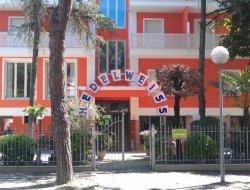Hotel Edelweiss - Bed & breakfast,Alberghi - Cervia (Ravenna)