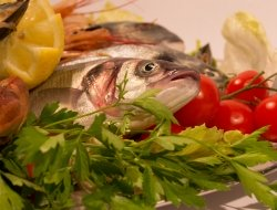 SO.CO PESCA IMPORT - EXPORT S.R.L. - Pescherie - Fasano (Brindisi)