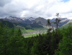 GALLI MONICA - Alberghi,Bed & breakfast - Livigno (Sondrio)