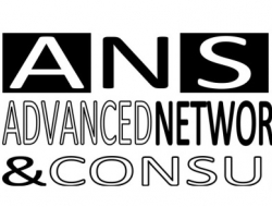 Advanced Network Solutions & Consulting - Web design - Pisa (Pisa)