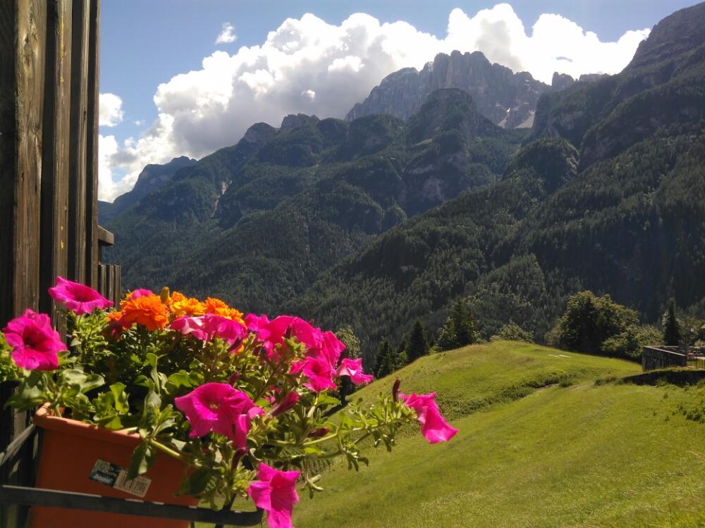 Zipline San Tomaso l emozionante volo tra le vette delle Dolomiti 425f68d7e863